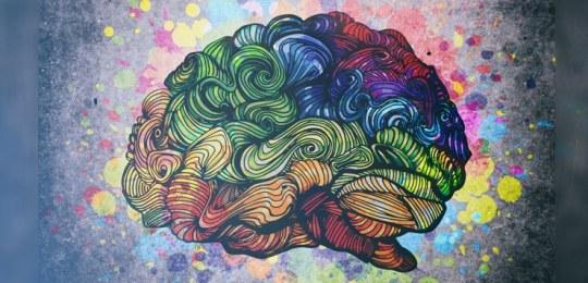 Gratitude-Brain